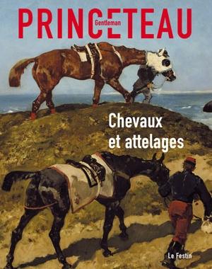 Gentleman Princeteau - 1 - Chevaux et attelages